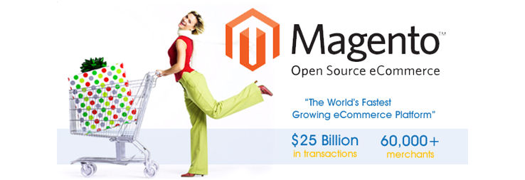 Magento Open Source Ecommerce Shopping Cart & Web Store